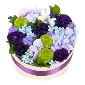 꽃상자 c790